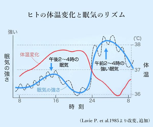 グラフ ヒトの体温変化と眠気のリズム